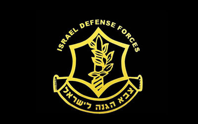 The Light for Peace campaign this Chanukah will raise funds for the IDF.