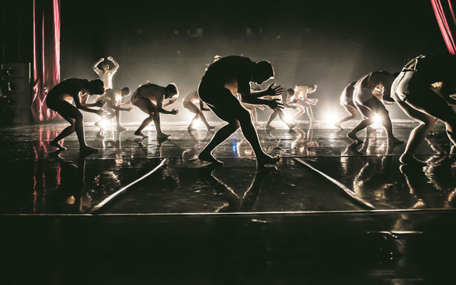 The Kibbutz Contemporary Dance Company's latest work, Horses in the Sky. Photo: Eyal Hirsch