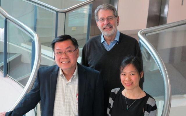 From left: Garvan's Professor Tuan Nguyen and Professor John Eisman, with University of Sydney researcher Thao Phuong Ho-Le. Photo: Garvan