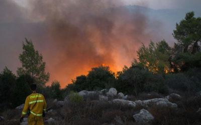 A firefigher at the scene of a bushfire which started on November 25 near Nataf, outside of Jerusalem. Photo: Yonatan Sindel/Flash90.