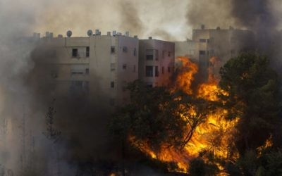 A fire burning in Haifa on November 24. Photo: AP/Ariel Schalit