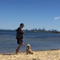 Carin Danon's son Ethan and dog Sox enjoy a beautiful summer's day at Sandringham Dog Beach.