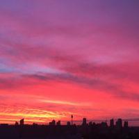Denise Susman entered this sunset photo taken in Bondi Junction.