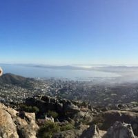 Margaret Perlman entered this photo of Micky Perlman on Table Mountain in Cape Town.