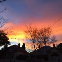 Natalie Adler entered this sunrise photo taken in Caulfield.