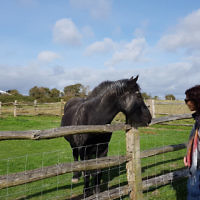 Peter Shonberg entered this holiday photo of his wife Diane making friends with a horse in the English countryside.