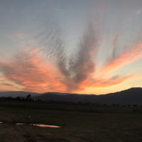 Renee Schneider entered this photo of sunset in the Hula Valley, Israel.