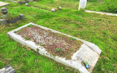 Millington's grave at Sidcup Cemetery in Britain.