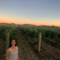 Rachel Shnider entered this photo of sunset over the vines in the Barossa Valley, South Australia.