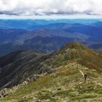 Sharon Flitman entered this photo of Malcolm Flitman at Mt Bogong, Victoria.