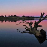 Sharon Flitman entered this sunset photo taken at at Caroar, NSW