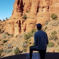 Yvonne Lieblich entered this photo taken in Arizona, USA.