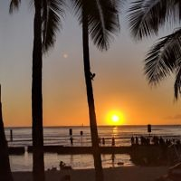 Michele Sharp entered this sunset photo taken in Honolulu, Hawaii.