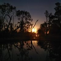 Talia Steinberg entered this sunset photo taken on the Murray River in South Australia.