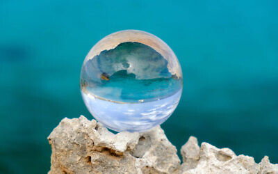 Andrew McAuley has used his crystal ball to make some predictions about 2020. Photo: Elena Krivorotova.