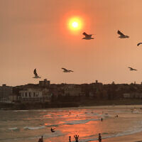 Paul Nailand entered this sunset photo taken at Sydney's Bondi Beach.