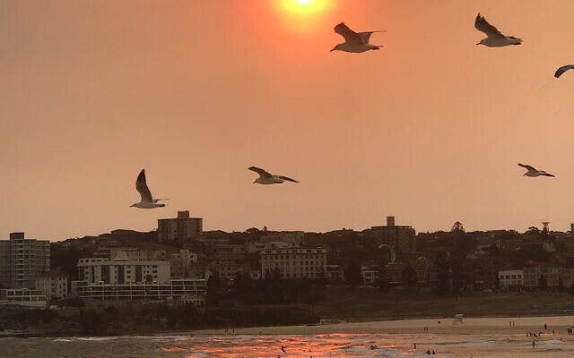 SUNSET FINALIST F: Sunset at Bondi Beach. Photo entered by Paul Nailand.