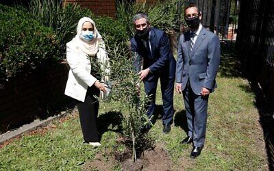 From left: Dr Nariman Al Mulla, Rabbi Yaakov Glasman and Anton Block planting the olive tree. Photo: Peter Haskin