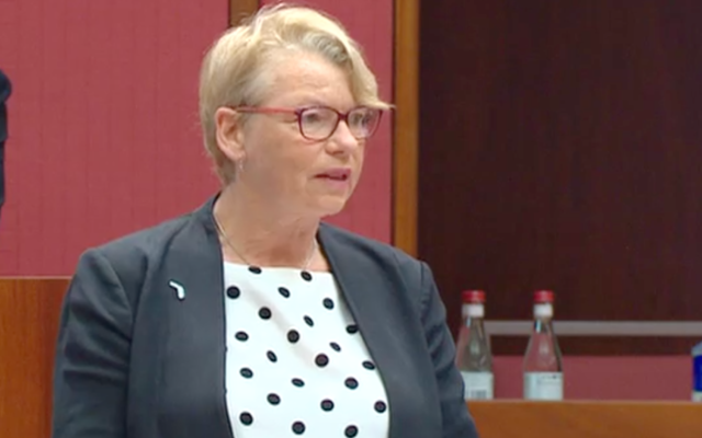 Senator Janet Rice speaking in the Senate last week. Photo: Screenshot