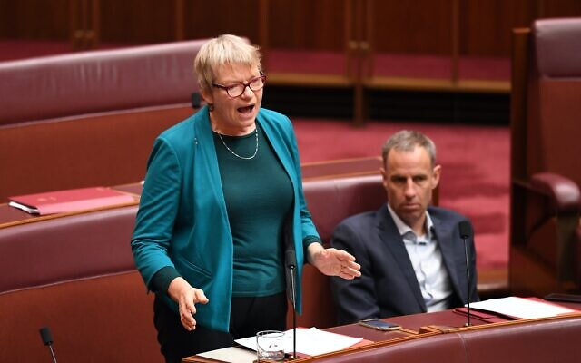 Senator Janet Rice (left) speaking in the Senate. Photo: AAP Image/Lukas Coch