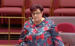 Senator Anne Urquhart. Photo: Screengrab