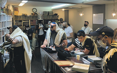 Shacharit in the Tokyo Chabad house. Photo: Chabad Tokyo/ynet