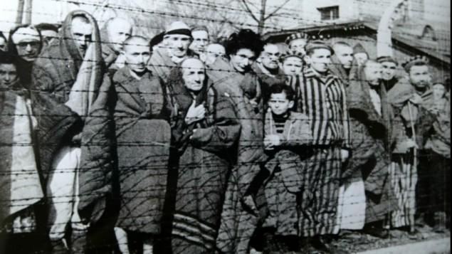 اليهود في أوشفيتس- بيركيناو عند تحريرهم يناير 1945 (ويكيميديا عام)