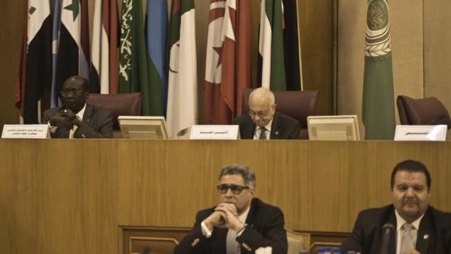 وزير خارجية جنوب السودان بارنابا ماريال بنيامين (في الخلف من اليسار) السكرتير العام للجامعة العربية نبيل العربي (من الخلف الى اليمين) في القاهرة ٩ مارس ٢٠١٤ ( بعدسة خالد دسوقي/ أ ف ب)