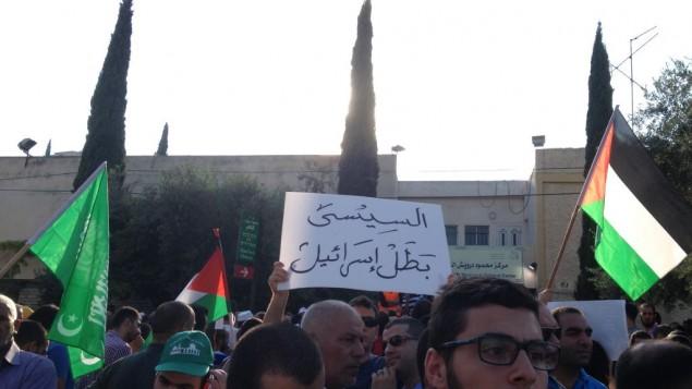 """متظاهر يحمل لافتة """"السيسي بطل اسرائيل"""" في الناصرة ٢١ يوليو ٢٠١٤ (الحانان ميلر)"""
