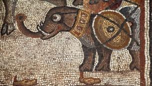 فسيفساء من القرن الخامس, فيل حرب. قرية حقوق التوراتية  (بعدسة جيم هابرمان)
