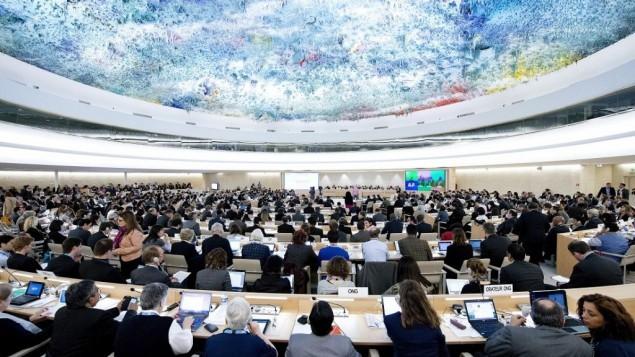 اجتماع لمجلس حقوق الانسان للأمم المتحدة في عام 2013 (UN Photo/Jean-Marc Ferré)