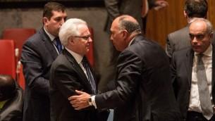 المبعوث الروسي للأمم المتحدة فيتالي شوركين ووزير الخارجية المصري سامح شكري بعد جلسة مجلس الأمن، 18 فبراير 2015 (ANDREW BURTON / GETTY IMAGES NORTH AMERICA / AFP)