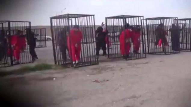 اسرى اكراد يرتدون زيا برتقالي اللون يدخلون داخل اقفاص قبل عرضهم في السوق الرئيسية لمنطقة الحويجة (YouTube screen capture)