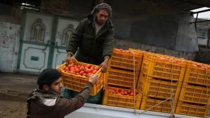مزارعون فلسطينيون يحملون صناديق من الطماطم على شاحنة في قطاع غزة، 12 مارس 2015 (SAID KHATIB / AFP)