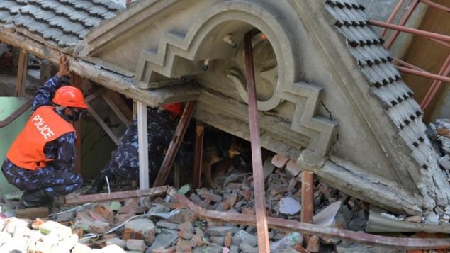 طاقم اغاثة نيبالي وكلب بحث يبحثون عن الناجين تحت انقاض مبنى مدمر في كاتماندو عاصمة النيبال، 12 مايو 2015 (PRAKASH MATHEMA / AFP)
