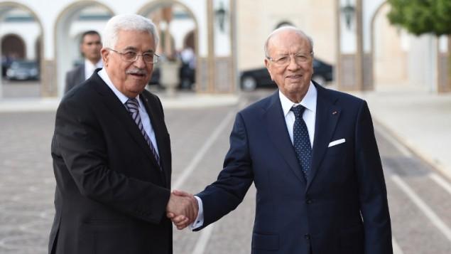 الرئيس التونسي الباجي قائد السبسي يستقبل الرئيس الفلسطيني محمود عباس في القصر الرئاسي في قرطاج، 12 مايو 2015 (FETHI BELAID / AFP)