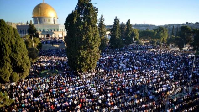 آلاف المصلين المسلمين يصلون خارج المسجد الأقصى في البلدة القديمة في القدس خلال عيد الأضحى في أكتوبر، 2014. ( Sliman Khader/FLASH90)