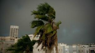 رياح شديدة وامطار غزيرة في تل ابيب، 25 اكتوبر 2015 (Ben Kelmer/Flash90)