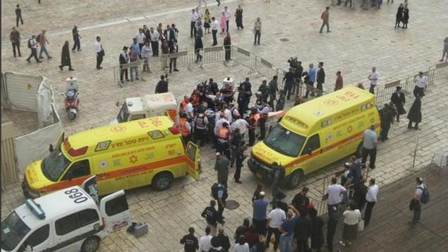 سيارات إسعاف تابعة ل'نجمة داوود الحمراء' وعناصر من الشرطة في موقع هجوم الطعن في البلدة القديمة بمدينة القدس، 7 أكتوبر، 2015. (Magen David Adom)