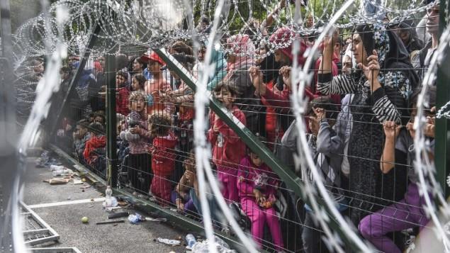 لاجئون يقفون خلف سياج على الحدود بين المجر وصربيا، 16 سبتمبر 2015 (ARMEND NIMANI / AFP)