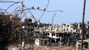 طيور تقف على قضبان حديدية لأنقاض مبان مدمرة وسط مبان تضررت بشكل كبير في مدينة حمص التي مزقتها الحرب، 5 فبراير، 2015. (Joseph Eid/AFP)