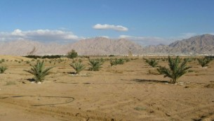 صورة توضيحية: وادي عربة (Illustrative: The Arava desert. (Batya Ben Zvi/public domain/via Wikipedia))