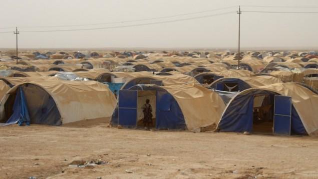 صورة لمخيم لنازحين عراقيين من مدينة الفلوجة المحاصرة على بعد 18 كيلومتر من الرمادي، 18 يونيو، 2016. (AFP/MOADH AL-DULAIM)