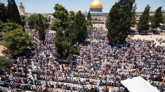 آلاف المصلين المسلمين أمام قبة الصخرة في المكان الذي يُعرف لدى المسلمين ب'الحرم الشريف' ولدى اليهود ب'جبل الهيكل'، خلال صلاة الجمعة الثانية من شهر رمضان في البلدة القديمة بمدينة القدس، 17 يونيو، 2016. (Suliman Khader/Flash90)