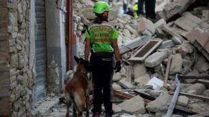 منقذون يبحثون عن ضحايا بين أنقاض منزل بعد أن ضرب زلزال قوي بلدة أماتريتشي الإيطالية في 24 أغسطس، 2016. (AFP PHOTO / FILIPPO MONTEFORTE)