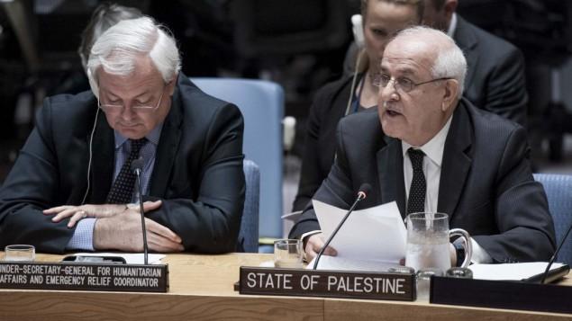 رياض منصور يخاطب مجلس الامن الدولي، 19 اكتوبر 2016 (Kim Haughton/UN)