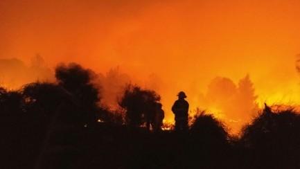 إشتعال النيران بالقرب من نيفيه شالوم، 22 نوفمبر، 2016. (Jerusalem Firefighters)