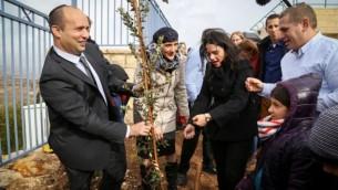 وزير التعليم نفتالي بينيت ووزيرة العدل أييليت شاكيد يغرسان شجرة بالقرب من مدرسة في مستوطنة تقوع في الضفة الغربية، 24 يناير، 2016. (Gershon Elinson/Flash90)