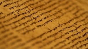 نص من مجموعة مخطوطات البحر الميت معروض في متحف إسرائيل في القدس، 26 سبتبمر، 2011. (Miriam Alster/Flash90)