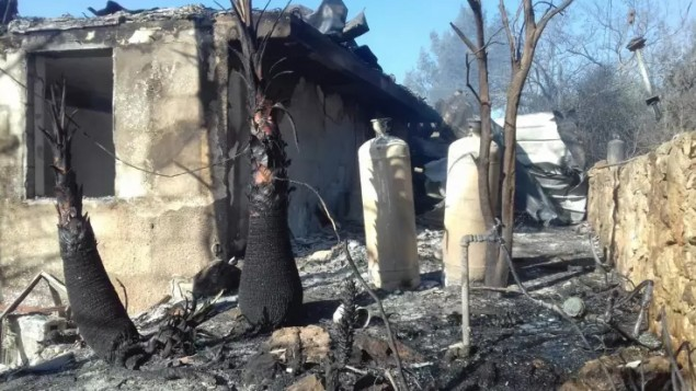 منازل وأشجار محترقة في مستوطنة حلميش في الضفة الغربية، 26 نوفمبر، بعد يوم من حريق هائل دمر أو ألحق أضرار بعشرات المنازل. (Israel Fire and Rescue Services)